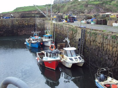 Bronze - Crail Harbour