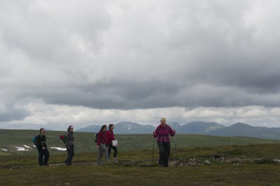 Summit of Carn Bad an Fhraoich - 817 mtrs